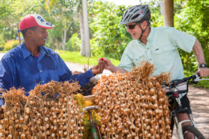 Bicycle Tours in Cuba