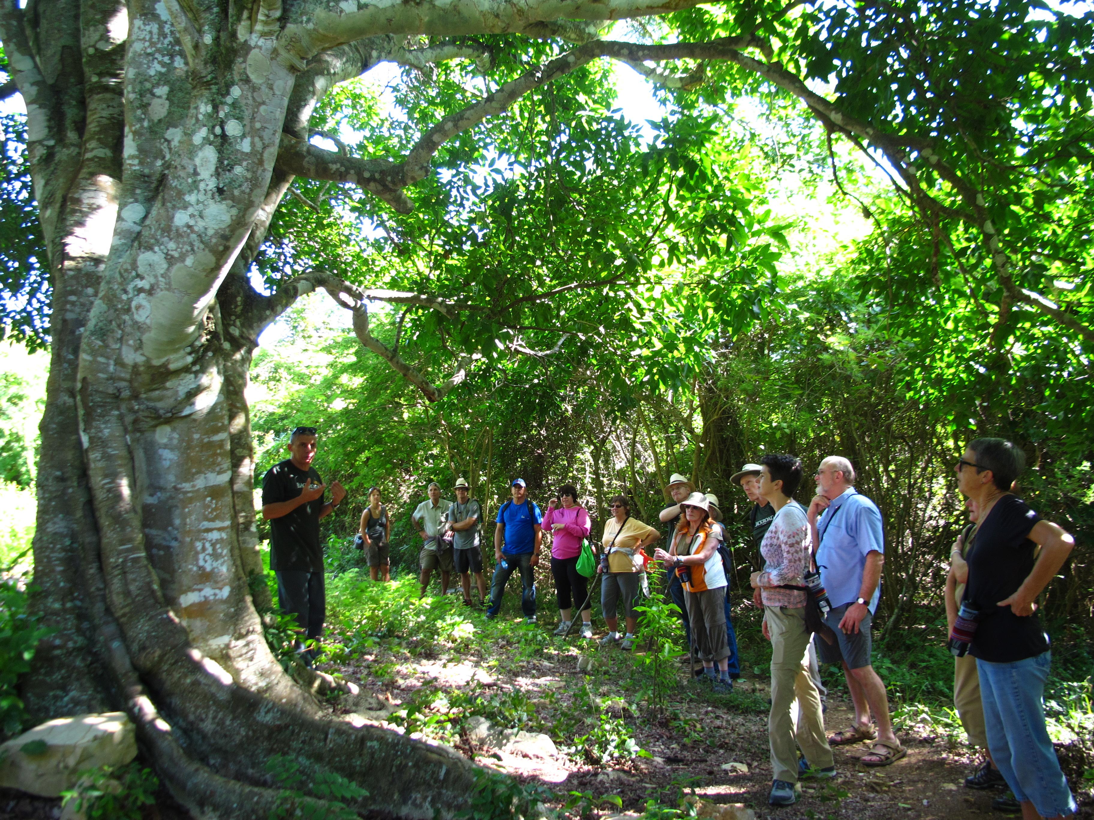 las terrazas sierra del rosario biosphere reserve